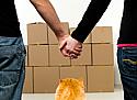 Особенности переезда с кошкой